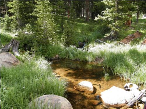 claim creek colorado