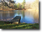 3 acres Cabin Stocked Pond in Belfast NY