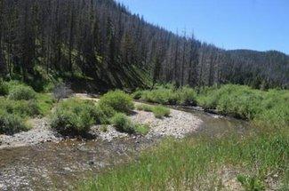 Silver Creek, claim creek