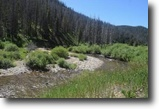 California Hunting Land 40 Acres 40 ac. w/Creek California Gold MiningClaim