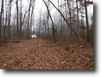 Tennessee Farm Land 103 Acres 102+ ac – Private W/ Creek, Springs, No Re