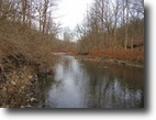 11 Acres with Creek bordering State
