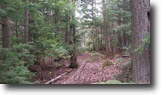 25 acre natural property in Fredericton NB