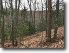 Michigan Hunting Land 39 Acres TBD Timber Creek Rd, Mls# 1105931