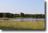 478-acre cattle/horse ranch