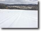 77 acres Farmland & Hunting Canaseraga NY