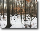 77 acres Hunting Genesee NY Sanford Hollow