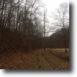 Just Listed; 143+/- acres & Cabin $175,000