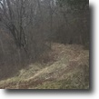 Kentucky Farm Land 140 Acres Just Listed: 140+/-AC PER PVA In Elliott