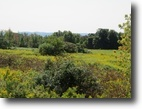 5 acres Oppenheim NY with Owner Financing