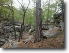 17.80 Acres Hunting/Recreational Land
