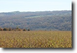 14 acres Lincoln NY with Owner Financing