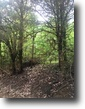 15 Acres For Sale in Oktibbeha County