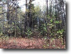 40+ Acres For Sale in Clay County