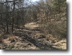 52 Wooded Acres In Monroe Co. KY