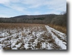 244 acres Campbell NY 5547 Meads Creek Rd
