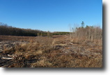 26 +/- Acres of Raw Land in Spotsylvania