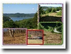 Tennessee Land 1 Acres 1.10ac Center Hill Lake View/ Harbor Point