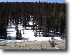 Colorado high country cabin with acreage