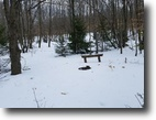 38 acres Hunting Avoca NY 4191 Stever Road