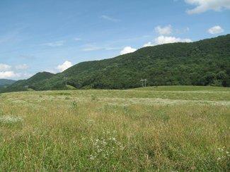 197 Acres Roanoke County Catawba