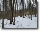 124 acres Hunting Wellsville NY near River