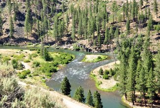 East Fork Carson River, Claim River