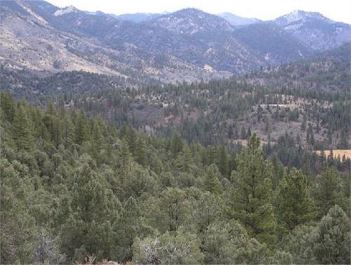claim area views california