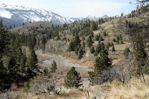 claim river and views california