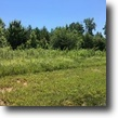 41+ acres, spring,wooded,no restrictions.
