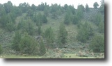 Oregon Ranch Land 160 Acres Amazing Income Producing Property