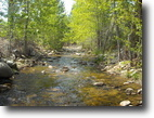 40 acres w/Creek Colorado Gold MiningClaim