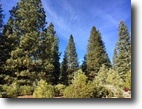 1/2 Acre Homesite @ Bailey Creek