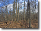 32 acres Timberland Pavilion NY Financing