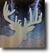 Texas Hunting Land 25 Acres Hunting Land bordering big Nature Preserve