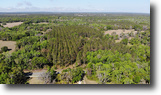 Istachatta 20 acres in Brooksville