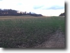 Kentucky Farm Land 55 Acres Just Listed: 55+/- Ac in Elliott $110,000