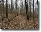 37 acres Hunting Rathbone NY County Rte 21