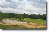 60 acres 5 bedroom 3 bath in Smith County