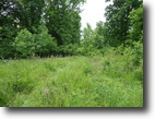 Tennessee Hunting Land 40 Acres 40ac w/River Frontage & Mountain Views