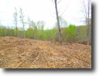 Tennessee Farm Land 16 Acres 15.86 surveyed ac in a secluded location