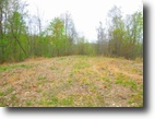 Tennessee Farm Land 16 Acres 15.63 surveyed ac in a secluded location