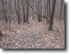 19 acres Woods Jerusalem NY Keuka Lake