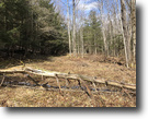 29 acres Hunting Maine NY 1601 Airport Rd