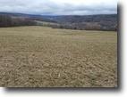 27 acres Tillable Farmland in Almond NY