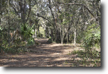 Florida Hunting Land 45 Acres Bear Hammock Game Haven in Eustis, Florida
