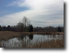 31 acres Springwater NY Ponds Streams Wood