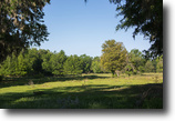 Florida Ranch Land 179 Acres Early Bird Ranch in Ocala, Florida