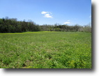 89 Acres In Metcalfe County, KY