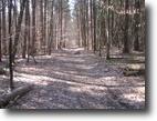 88 acres Timberland near Ithaca NY